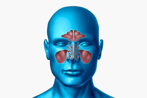 Cirugía Endoscópica de Nariz y Senos Paranasales